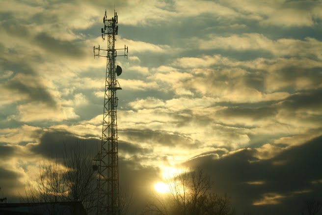 In de aankomende frequentieveiling voor 5G gaat de overheid waarschijnlijk een verplichting opleggen voor de dekking van 5G door heel Nederland. Hiermee voorkomt de overheid dat dunbevolkte gebieden niet de beschikking hebben over 5G of zelfs onbereikbaar zijn. Dit alles staat beschreven in het Actieplan Digitale Connectiviteit. Welke eisen er exact worden gesteld is nog niet duidelijk.
